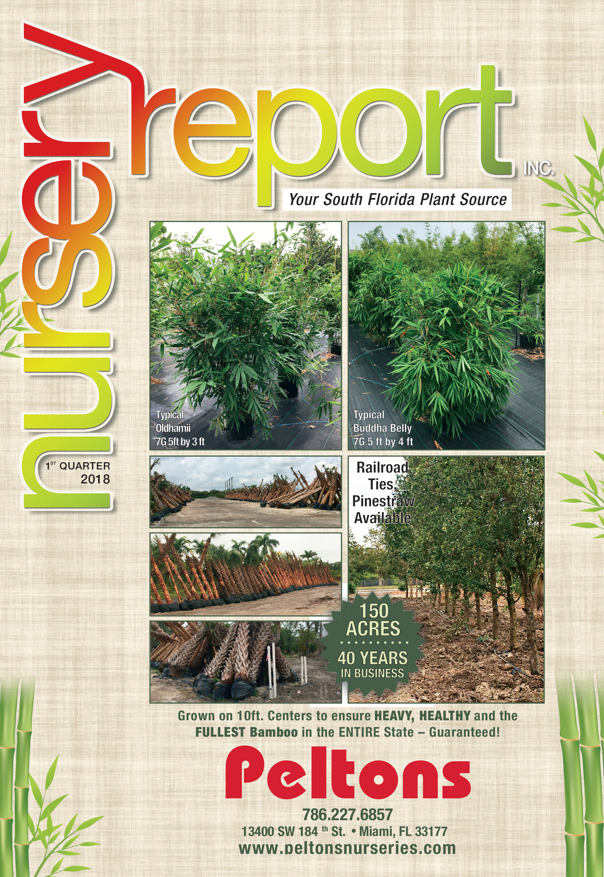 1st Qtr Front Cover